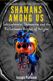 Shamans Among Us by Joseph Polimeni